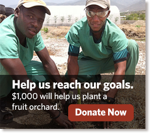 help-us-reach-our-goals-reforestation