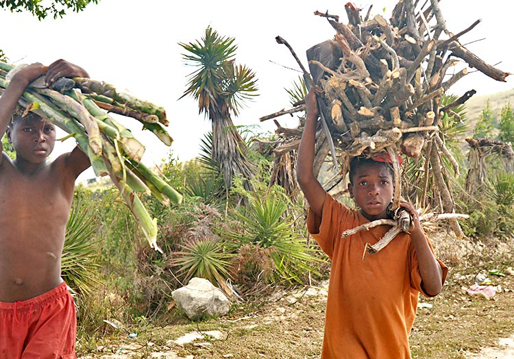 Poor children-carrying wood to sell.