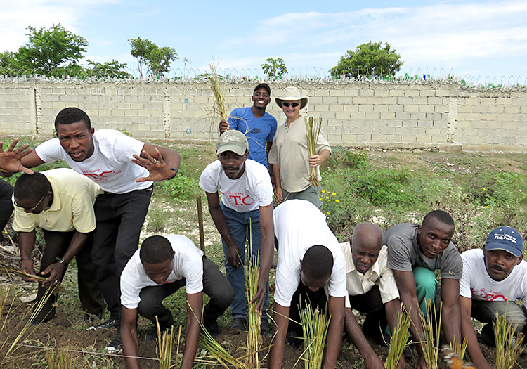 planting Vetiver grass that will greatly reduce erosion