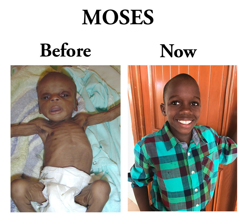 Update on Moses