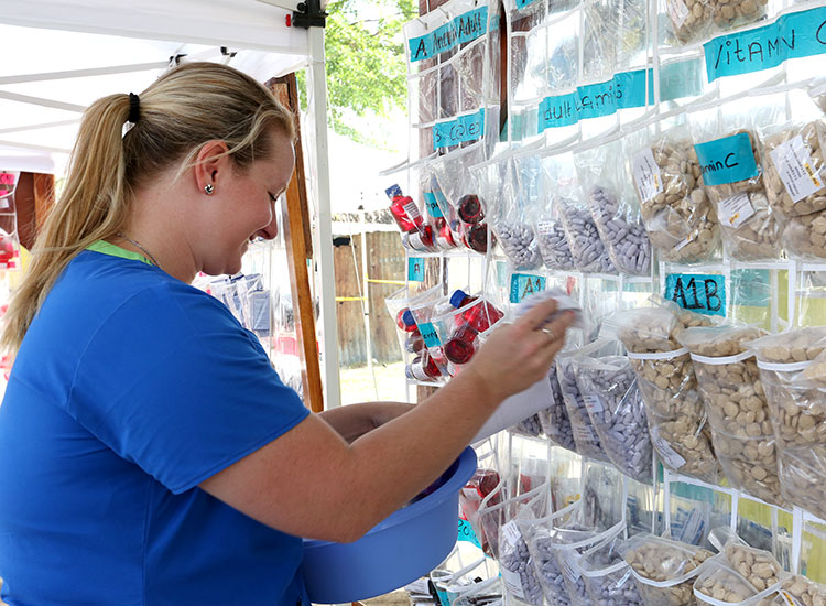 Kaeli working the pharmacy at a Mobile Medical Clinic.