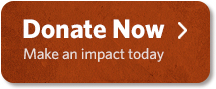 Donate Now Make an Impact