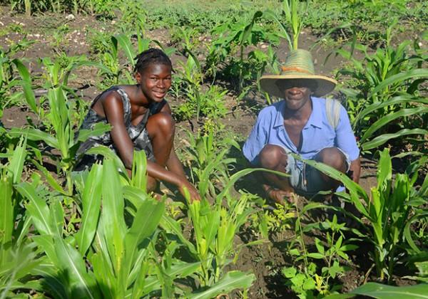 family-in-garden-plot-miracle-village-600x420
