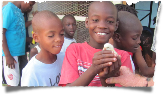 Boys holding a baby chick at Love A Child's chicken farm in Haiti