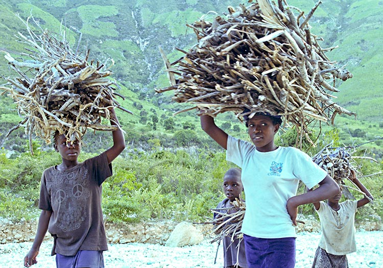 Deforestation of Haiti - Haitian family carrying wood to make charcoal.