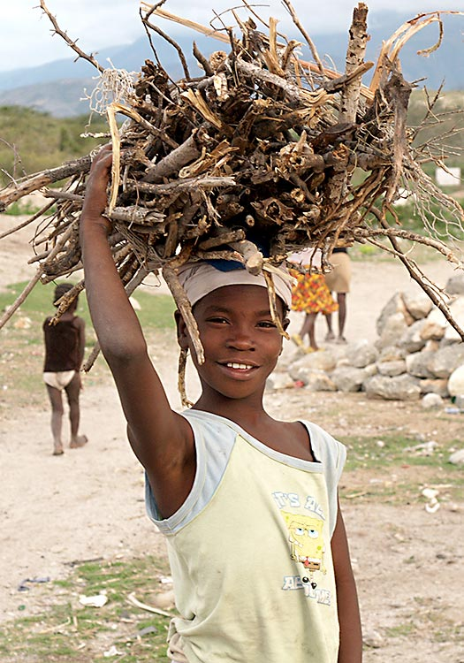 Deforestation of Haiti - Girl carrying wood for cooking charcoal.