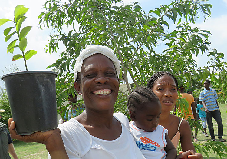 Haitian woman and child planting a tree.