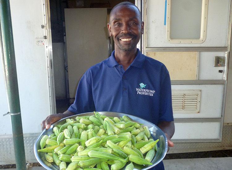 Haitians grow nutritional food.