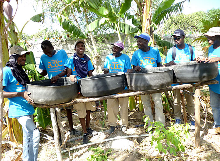 Haitians can utilize the good soil that can be made from composting.