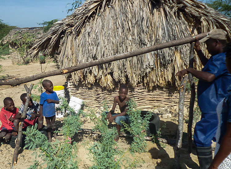 Young Haitian boys will learn about farming from those who have taken the ATC-Extension training.