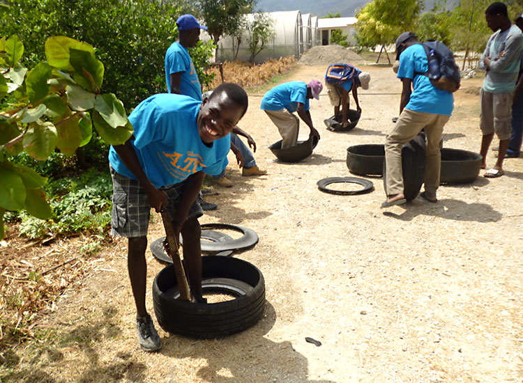 We re-purpose old tires, turning them into fruitful gardens.