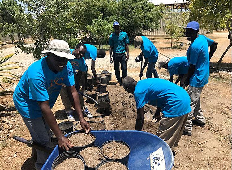 How to prepare good soil medium to grow optimum vegetables.