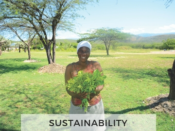 Sustainability-Home-Page-Graphic-New